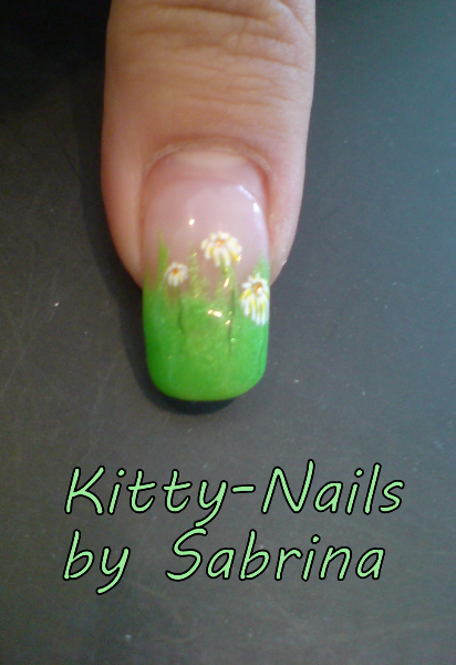 16 kitty-nails.com